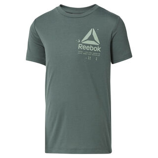 Boys' Training Graphic T-Shirt Chalk Green DH3340