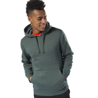 Elements Big Logo Hoodie Chalk Green D94289