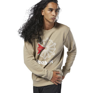 Classics French Terry Big Iconic Crewneck Super Neutral DM5158