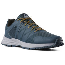 938b91e956a Reebok - Reebok Astroride TRAIL Blue Hills Cool Shadow Trek Gold Black  CN6240