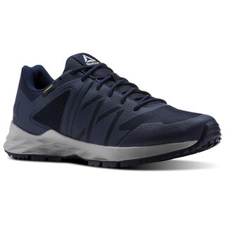 Reebok Astroride TRAIL GTX Collegiate Navy/Tin Grey/Vital Blue CN4588