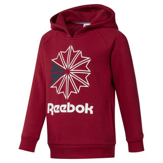 Boys' Classics Hoodie Cranberry Red DH3234